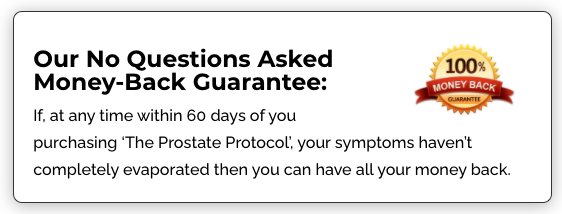 The Prostate Protocol Program