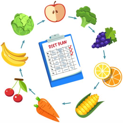 custom plant based meal plan