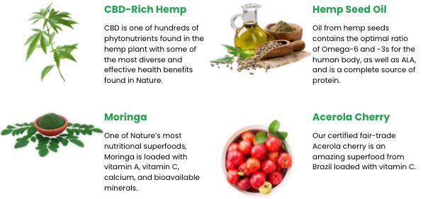 Ojai Energetics Full Spectrum Hemp Elixir ingredients