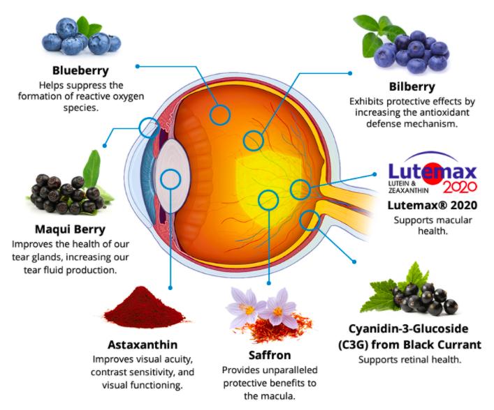 Vision Alive Max Ingredients