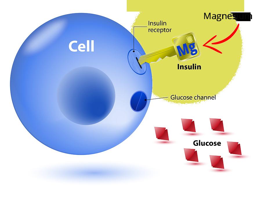 EasyRelief Magnesium